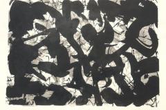 Reihe-o.T.-2011-Lithographie-Aufl.-5-Stck.-Motivgroesse-43x31-cm-auf-Buettenkarton-42x59-cm-23