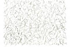in-motion-2011-Lithographie-Aufl.-4-Stck.-Motivgroesse-43x31-cm-auf-Buettenkarton-42x59-cm-14