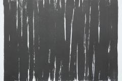 Reihe-_Lineamente_-in-Schwarz-16.11.2019-Lithographie-Aufl.-4-Stck.-Motivgroesse-43x31-cm-auf-Buettenkarton-59x42-cm