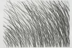 LinienFeld_-23.8.2018-Lithographie-Aufl.-3-Stck.-Motivgroesse-44x31-cm-auf-Buettenkarton-59-x42-cm_compressed