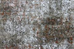 a.d.-Reihe-Beschreibungen-Tondruck-u.-Graphitkreide-auf-Seidenpapier-25.1.2010-60-x-80-cm