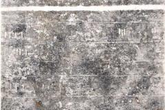 a.d.Reihe-Lineamente-Tondruck-auf-Seidenpapier-2009-60-x-44-cm-mit-Passepartout-60-x-80-cm